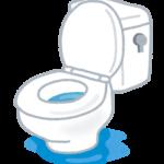 トイレのボールタップ付近の水漏れ!マルチボールタップ交換してみた!